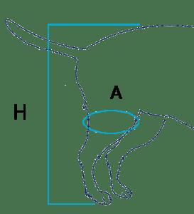 BT-JUMP-CHART-273x300