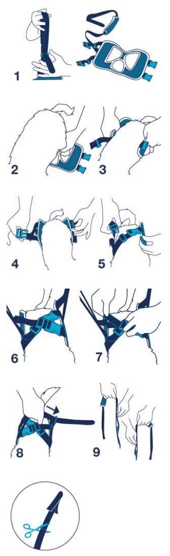 Fitting Instructions Balto BT-UP